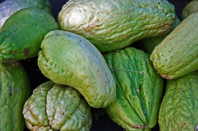 low salicylate food chayote